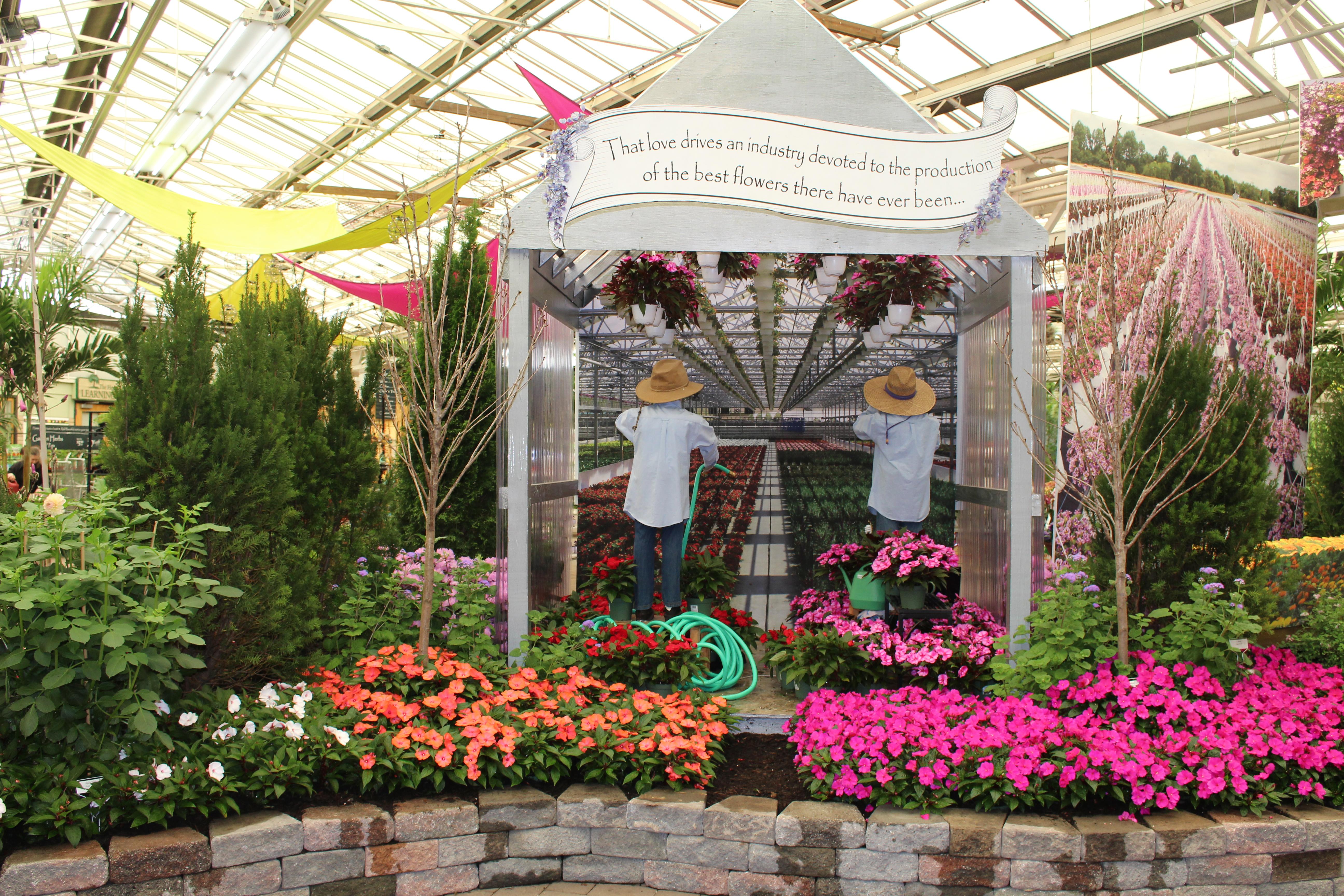 Flower & Garden Inspiration